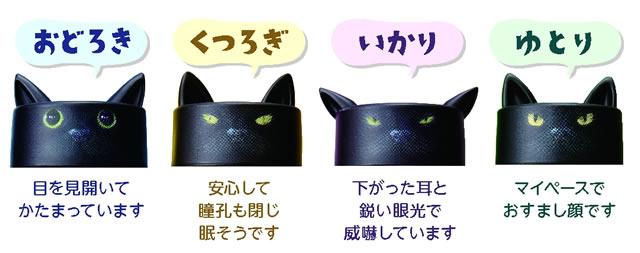 chatnoir-futaneko02.jpg