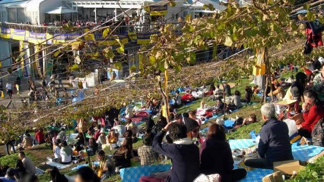 栃木足利ココファームワイナリー収穫祭の画像