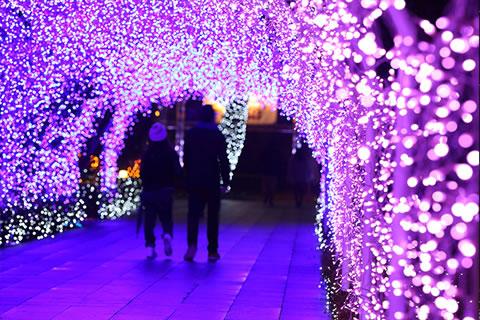 enoshima-illumi2016_03.jpg