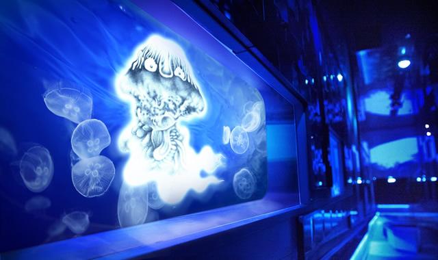 sumida-aquarium-mizukishigeru01.jpg