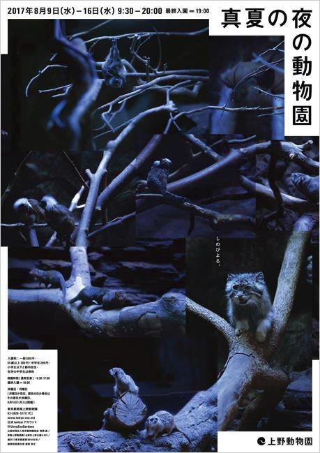 ueno-doubutsuen-night2017_01.jpg