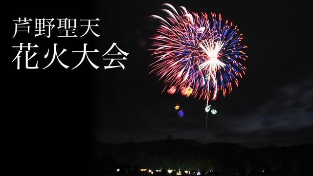 芦野聖天花火大会の画像