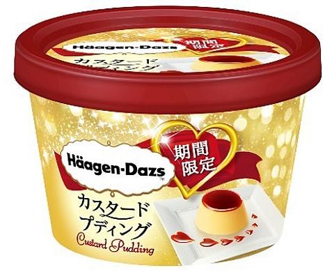 haagen-dazs-pudding01.jpg