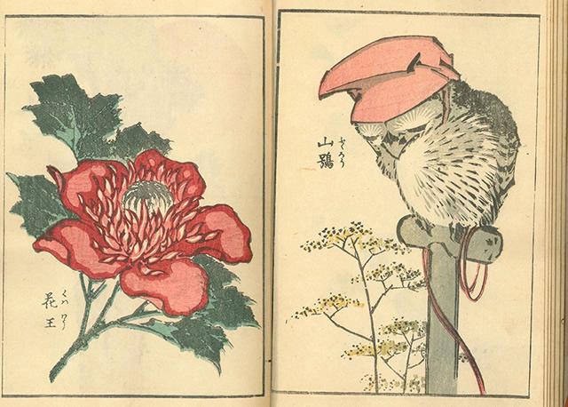 hokusai1902_02.jpg
