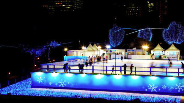 ice-rink-tokyo2016_02.jpg