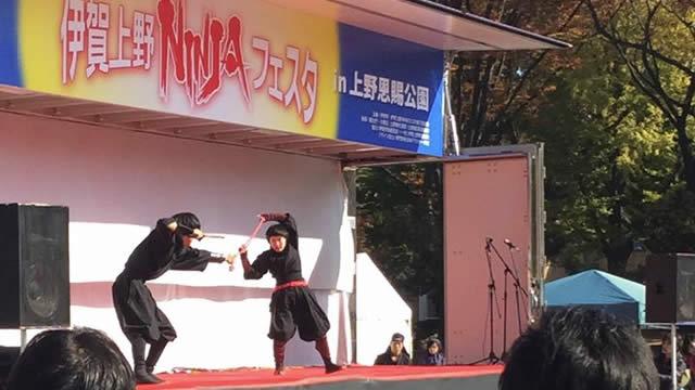伊賀上野NINJAフェスタin上野恩賜公園の画像