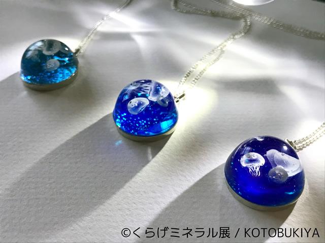jellyfish05.jpg