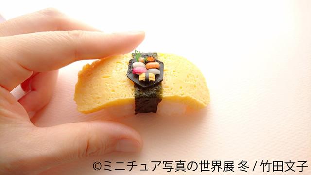 miniature-tgs1812_04.jpg