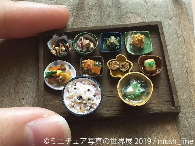 miniature-tgs1904_05.jpg