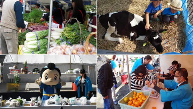 小田原市農業まつりの画像