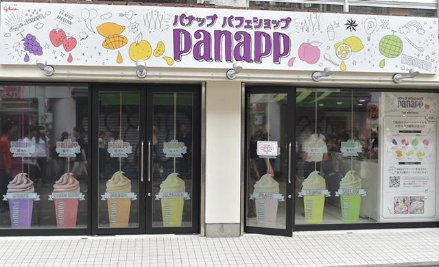 panapp03.jpg