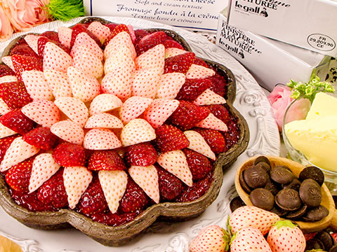 quilfaitbon-strawberry2019_08.jpg