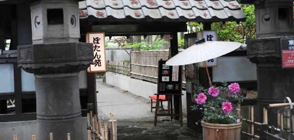 上野東照宮ぼたん苑の画像